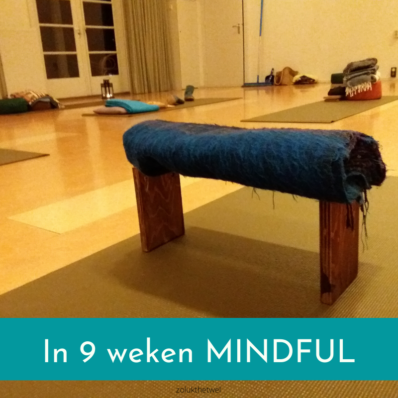 In 9 weken mindful